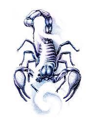 yin yang scorpion tattoo free design ideas