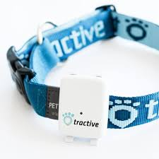 tractive gps tracker for dogs and cats gps collars for dogs