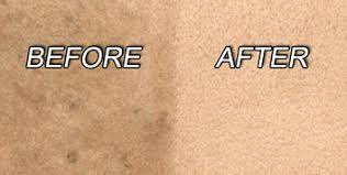 Area Rug Cleaning Prices Idaho Falls Carpet Cleaners Best Price U0026 Service Carpet Cleaning