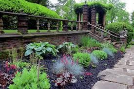 Rock Garden Plant Suitable For Rock Garden Plants The Blue Fescue Interior Design