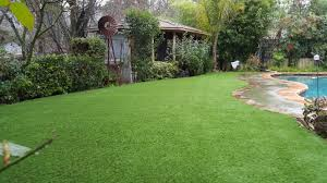 how every member of your family can appreciate your artificial grass