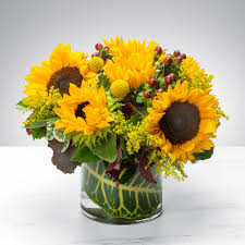florist st louis sunflowers by bloomnation in louis mo florist