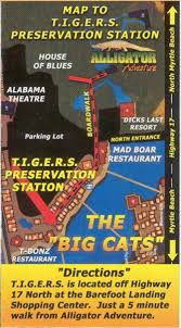 barefoot landing map tigers the animals of tigers