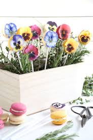 658 best colors of spring images on pinterest flower flowers