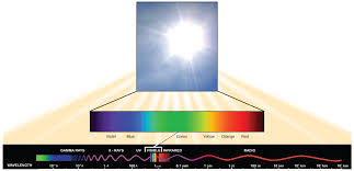 what type of energy is light reading spectrums of light biology early release