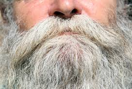 6 best beard growth products to get in 2017