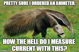 Anteater Meme - anteater imgflip