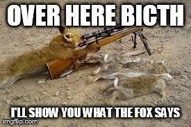 What Did The Fox Say Meme - image tagged in funny what does the fox say imgflip
