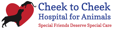 Healthy Care Packages Pet Health Care Packages Cheek To Cheek Animal Hospital