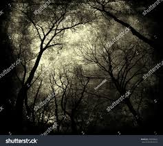 halloween nature background twilight forest scary trees mystic grunge stock photo 379004653