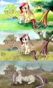 Mlp Fluttershy Meme - create meme fluttershy pony mlp fluttershy my little pony mlp