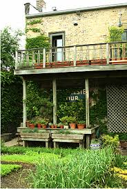 daily garden an urban vegetable garden pith vigor