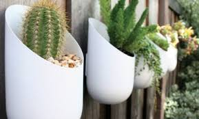 how to use plants in home decor comfree blogcomfree blog