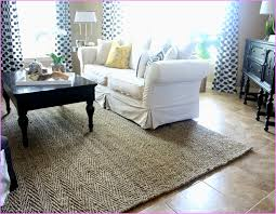 Pottery Barn Rugs 9x12 Potterybarn Rug Home Design Ideas And Pictures