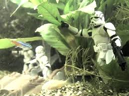 Okeanos Aquascaping May The Force Be With These Epic Star Wars Aquariums Fpsbutest
