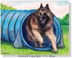 belgian sheepdog agility belgian shepherd tervuren dog agility tunnel sport oe art print