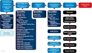 Padi Dive Table by Padi Vs Ssi These Are The Differences You Should Know About