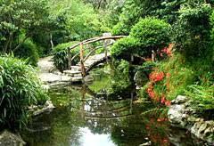 Zilker Botanical Garden What S Blooming At Zbg