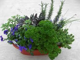 Herb Garden Planter Ideas by 100 Herb Garden Planter Ideas 25 Best Container Vegetable