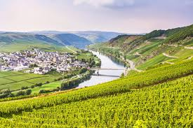 moselle moselle the moselle cycle path macs adventure
