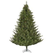 7 5 modesto pine artificial tree no lights yonder