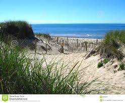 cape cod beach 04 royalty free stock images image 896829