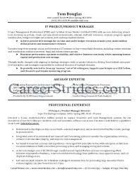 Project Manager Resume Template Anesthesiste Reanimateur Popular Argumentative Essay Editor Site