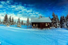 pictures czech republic smedava liberec region nature spruce winter