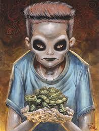 I Like Turtles Meme - i like turtles kid meme random pinterest meme memes and