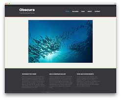 free homepage for website design 30 free responsive photography wordpress themes 2017 colorlib