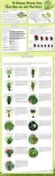 real florida gardeners guide florida pinterest gardens