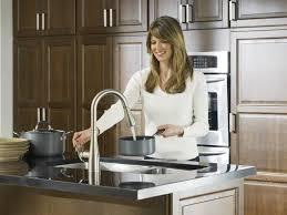 moen kleo kitchen faucet moen ca87011srs kleo single handle pulldown kitchen faucet spot