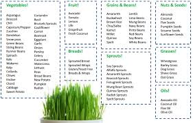 you are what you eat the ultimate alkaline detox diet for weight