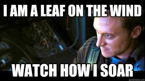 Wind Meme - celebrate fall by sending spacex a leaf on the wind take back