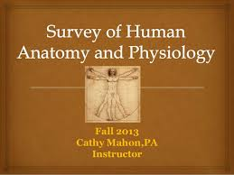 Human Anatomy And Physiology Chapter 1 Survey Of Human Anatomy And Physiology Chapter 1 To 4