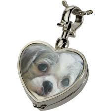 locket for ashes pet urn jewelry glass locket lock of fur glass heart