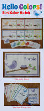 169 best color theme crafts and lesson plan images on pinterest