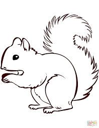 squirrel coloring pages free printable coloring 9420