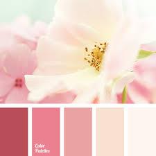 light pink color monochrome pink color palette color palette ideas