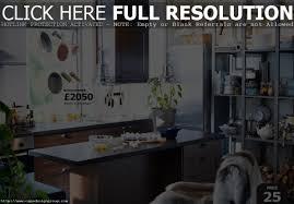 Ikea Small Kitchen Ideas Kitchen Design Ideas Ikea Home Decoration Ideas