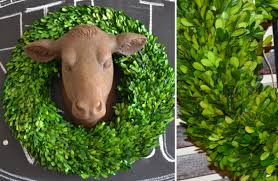preserved boxwood wreath wreath preserved boxwood wreath decorative wreaths