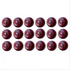 buy alum online buy sm wrecker alum tanned cricket leather balls 18 set