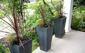 blog omotives how does the garden grow the challenge of