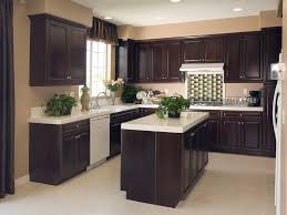 Restaining Kitchen Cabinets Darker Kitchen Cabinet Minimalist Modern Kitchen Interior Design With