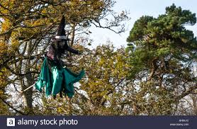 Flying Witch Decoration Witch And Broomstick And Flying Stock Photos U0026 Witch And