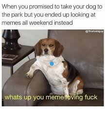 Meme Loving Fuck - 25 best memes about you meme loving fuck you meme loving