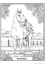843 coloring pages miscellaneous images