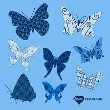 butterfly i vector
