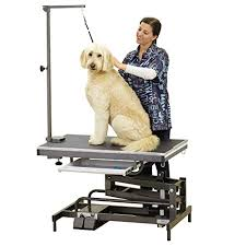 Dog Grooming Table For Sale Electric Dog Grooming Table Reviews Best Dog Table For Sale