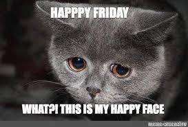 Sad Cat Memes - create meme sad cat meme sad cat sad sad cat pictures